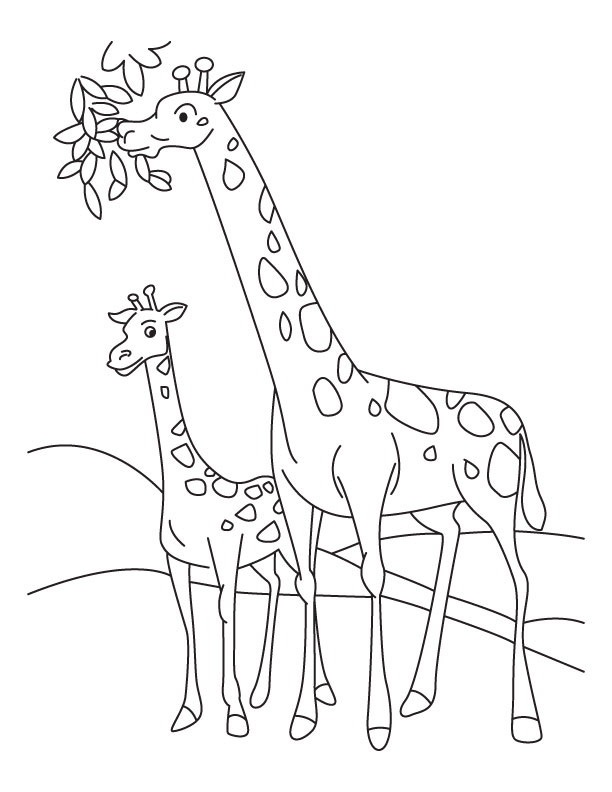 612x792 Pictures Of Giraffes To Color