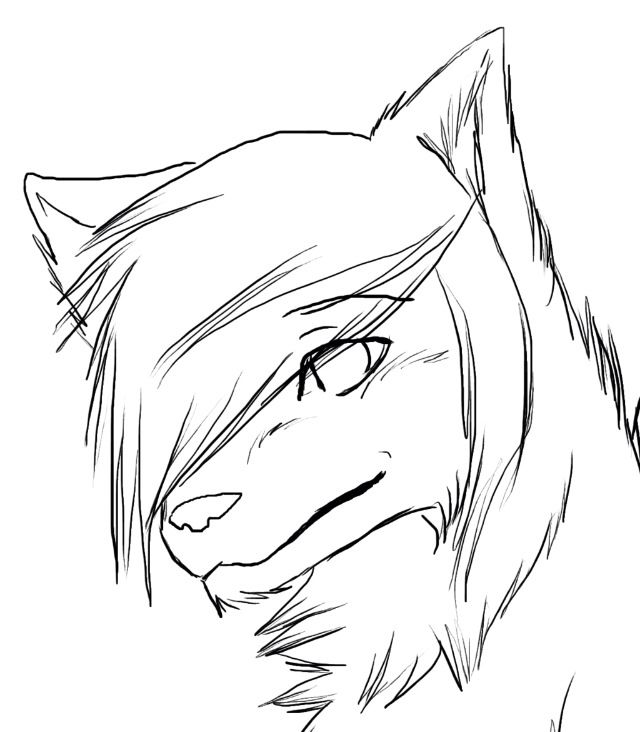 640x732 Drawing Arctic Wolf Easy Drawing As Well As Tribal Wolf Drawing