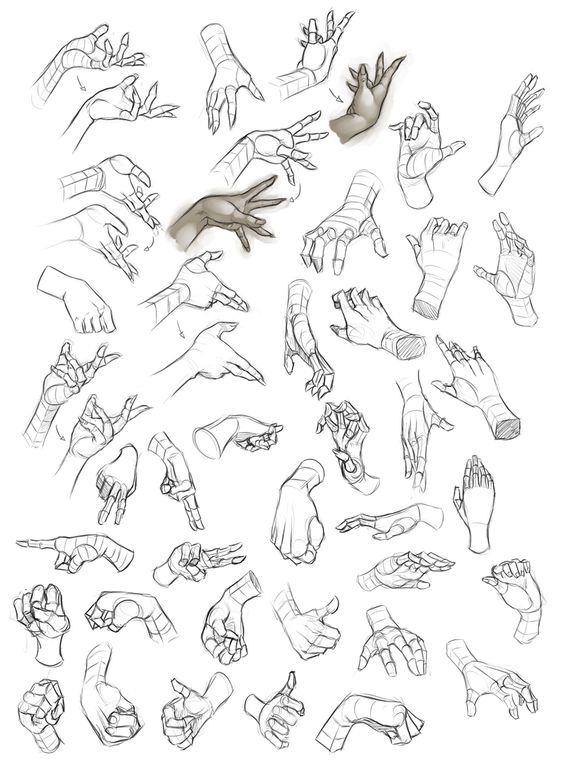 564x770 Female Hand Study 1 By ~dhex On Httpswww.facebook