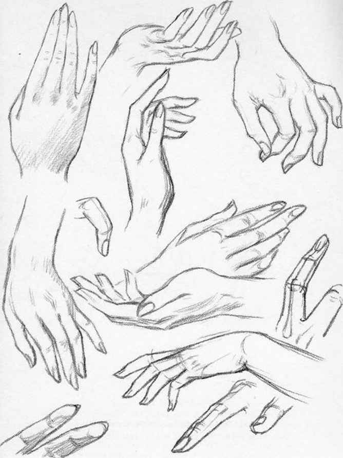 668x891 Gallery How To Draw Female Hands,