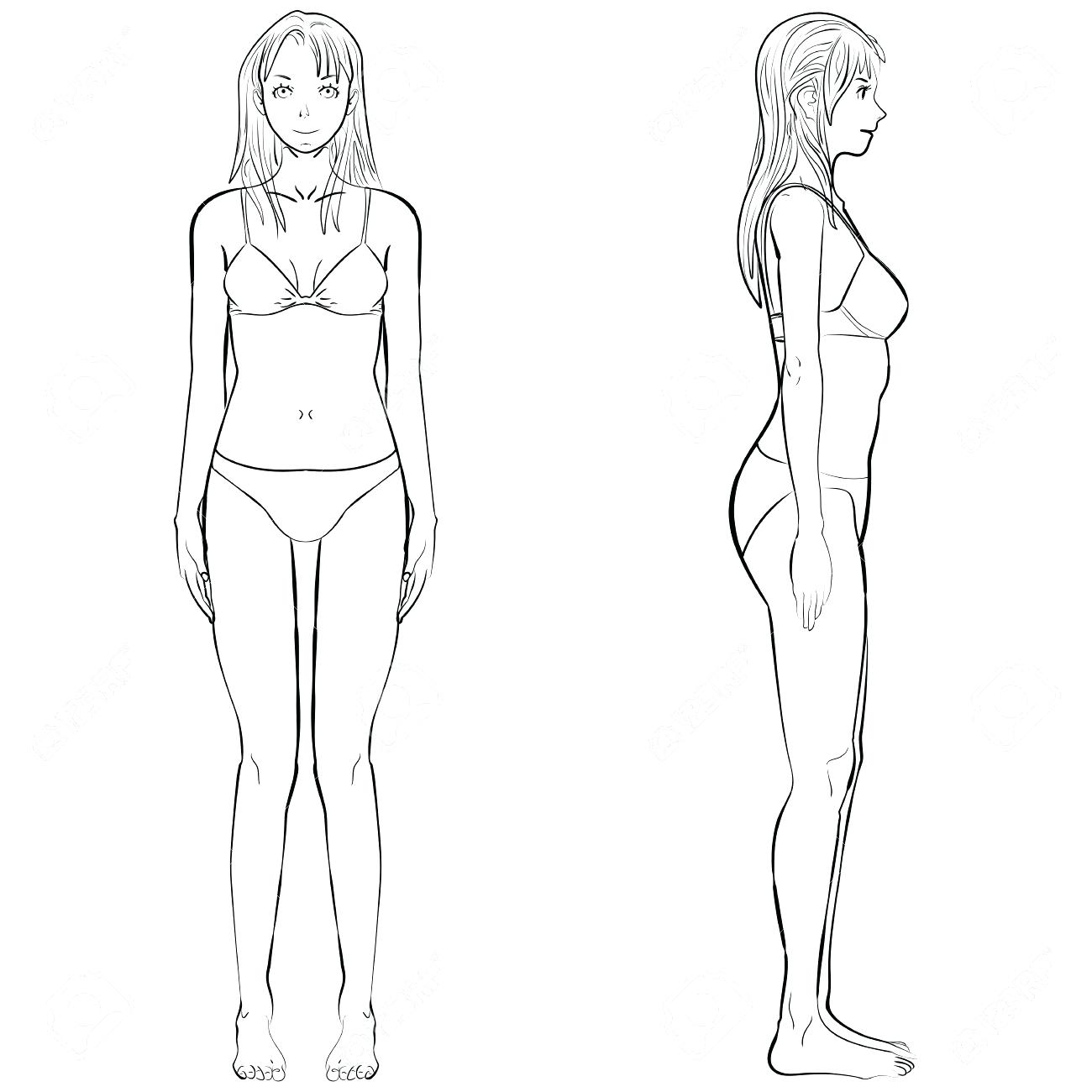 1300x1300 Comfortable Female Body Template Contemporary