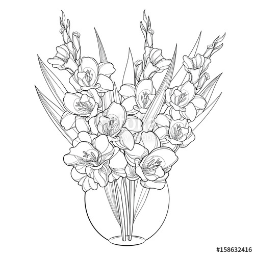 alstroemeria coloring pages - photo#16