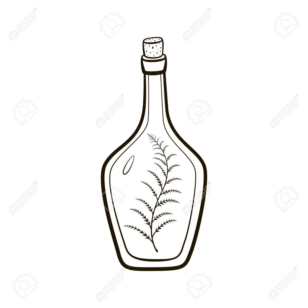 1300x1300 Vintage Bottle With Sprig Inside Hand Drawing Illustration