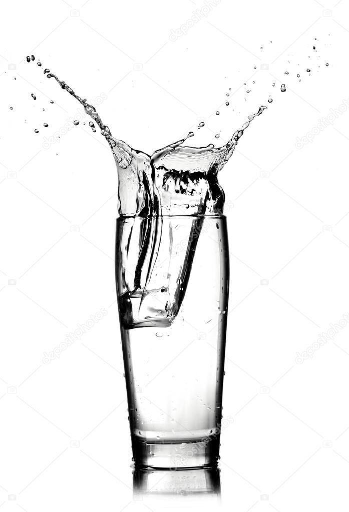 Rayne Drinking Water Amp