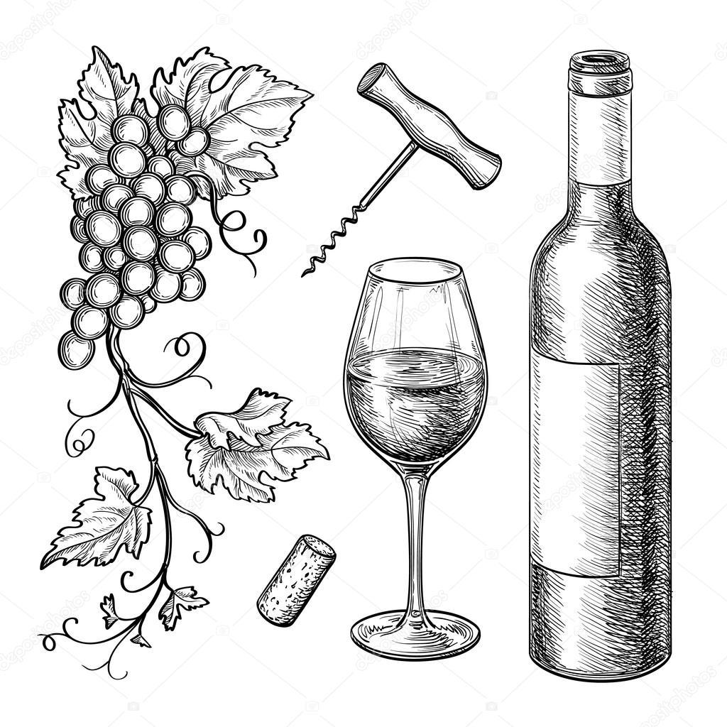 1024x1024 Grape Branches, Bottle, Glass Of Wine. Stock Vector Alhontess