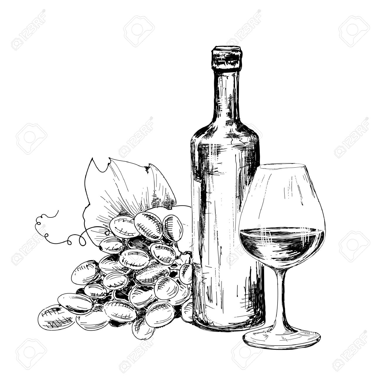 1300x1300 Bottle Of Wine, Glass And Grapes Hand Drawn Illustratuin Royalty