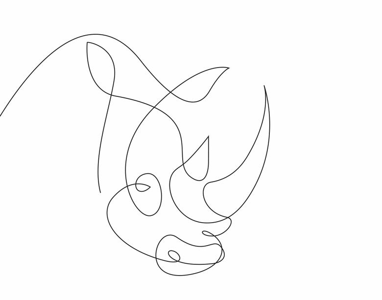 780x613 Ilustrando Animais Com Apenas Uma Linha Tattoo, Picasso And Drawings