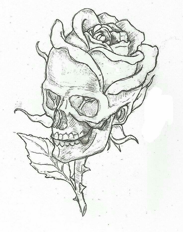 736x935 Pin By Kady Eva On Tattoo This Tattoo, Drawings