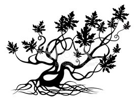 270x199 Gnarled Tree Silhouette Stock Vectors