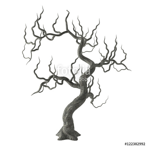 500x500 Spooky Gnarled Halloween Tree With Long Bare Branches Isolated