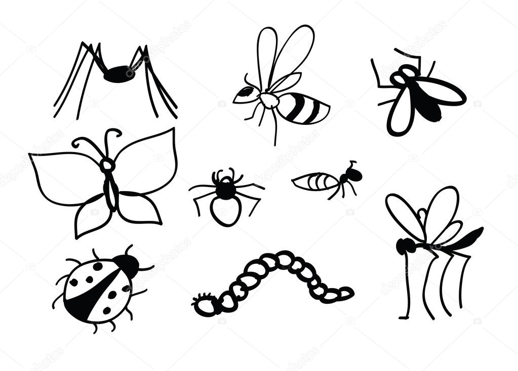1023x734 Set Of Vector Insects. Insects Set. Insect Collection Of Gnat, Ant