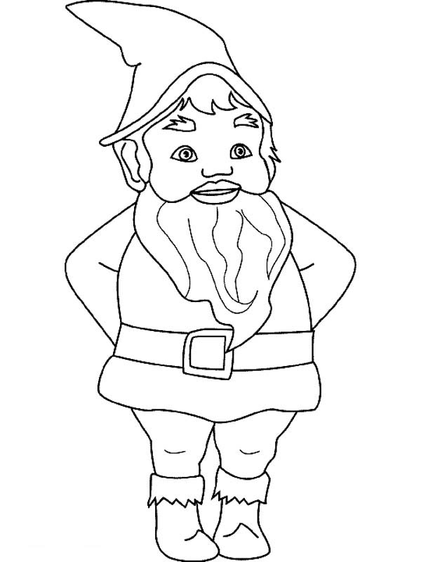600x800 Gnomes Drawings In Color What Are Gnomes
