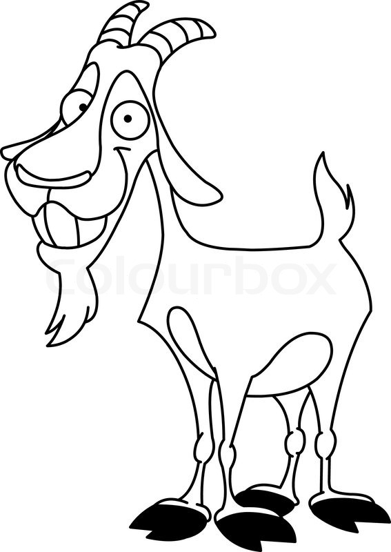 567x800 Outlined Billy Goat Stock Vector Colourbox
