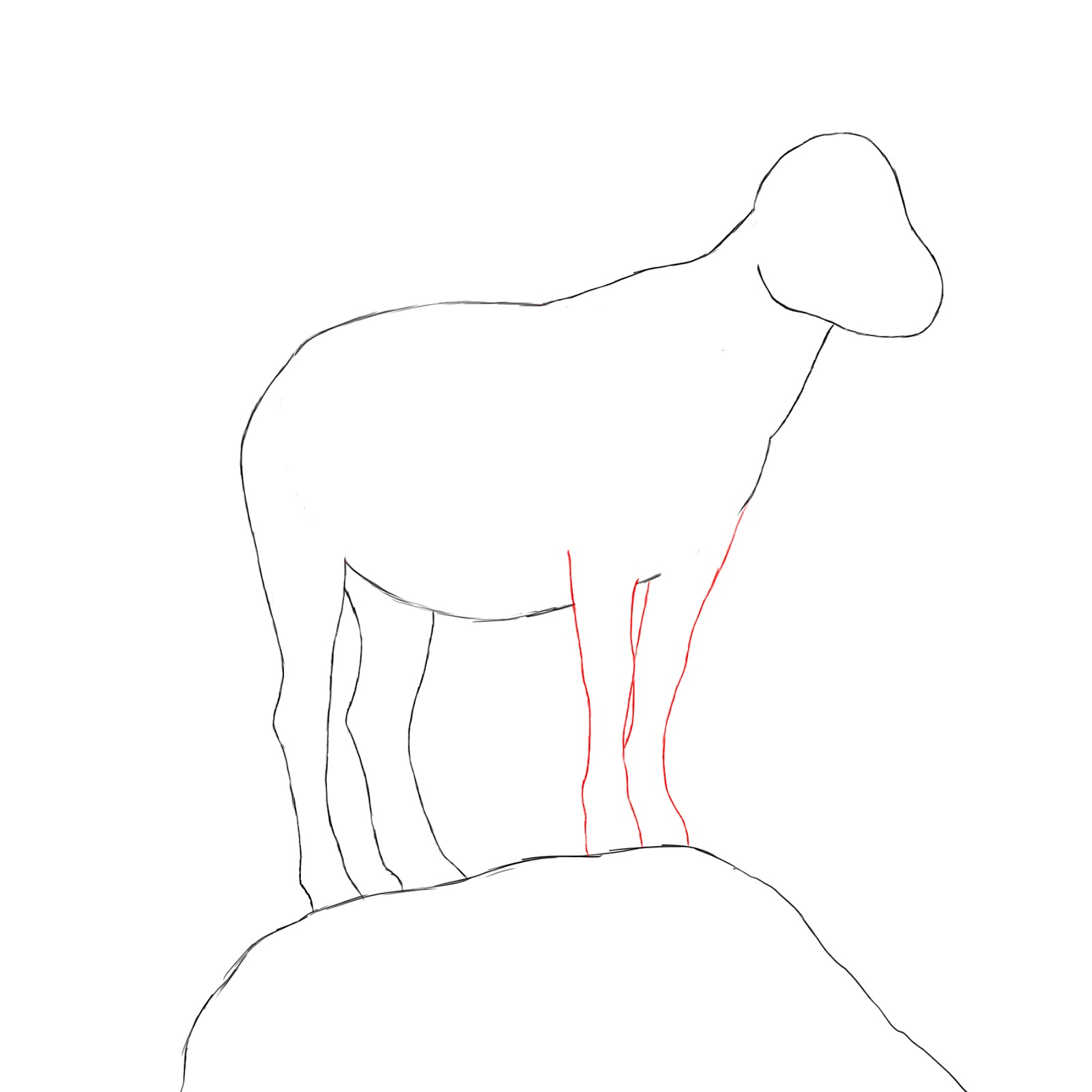 1600x1600 How To Draw A Goat
