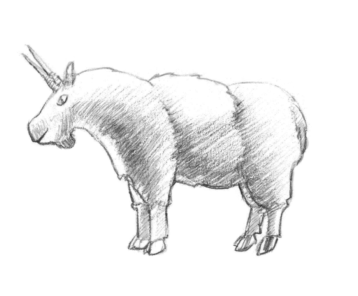 1236x1020 How To Draw A Mountain Goat
