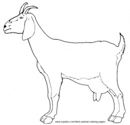 260x250 Farm Animal Coloring Pages Goats And Farming