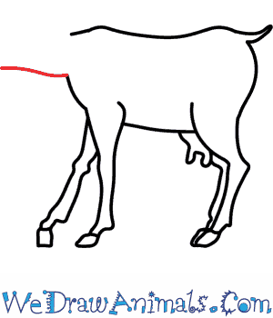 300x350 How To Draw A Goat