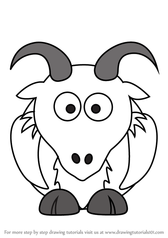 567x800 Learn How To Draw A Goat For Kids (Animals For Kids) Step By Step
