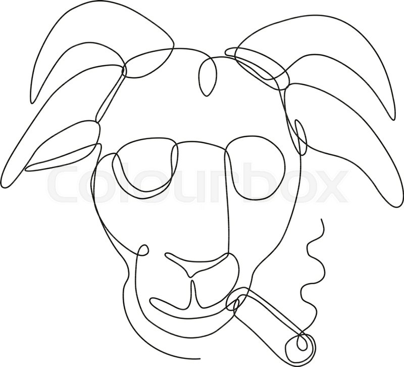 800x727 Continuous Line Drawing Illustration Of A Bill Goat Wearing
