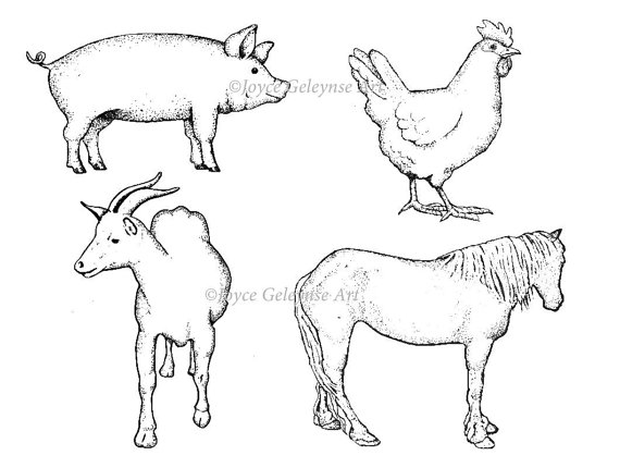 570x430 Digital Stamps, Hand Drawn, Farm Animals, Pig, Horse, Goat