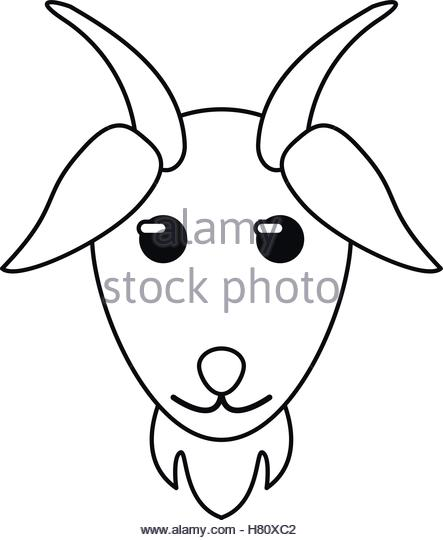 443x540 Goat Stock Vector Images