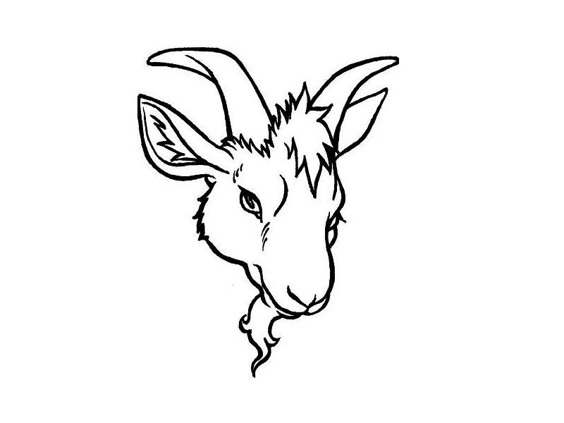 800x600 Pretty Goat Face Tattoo Design