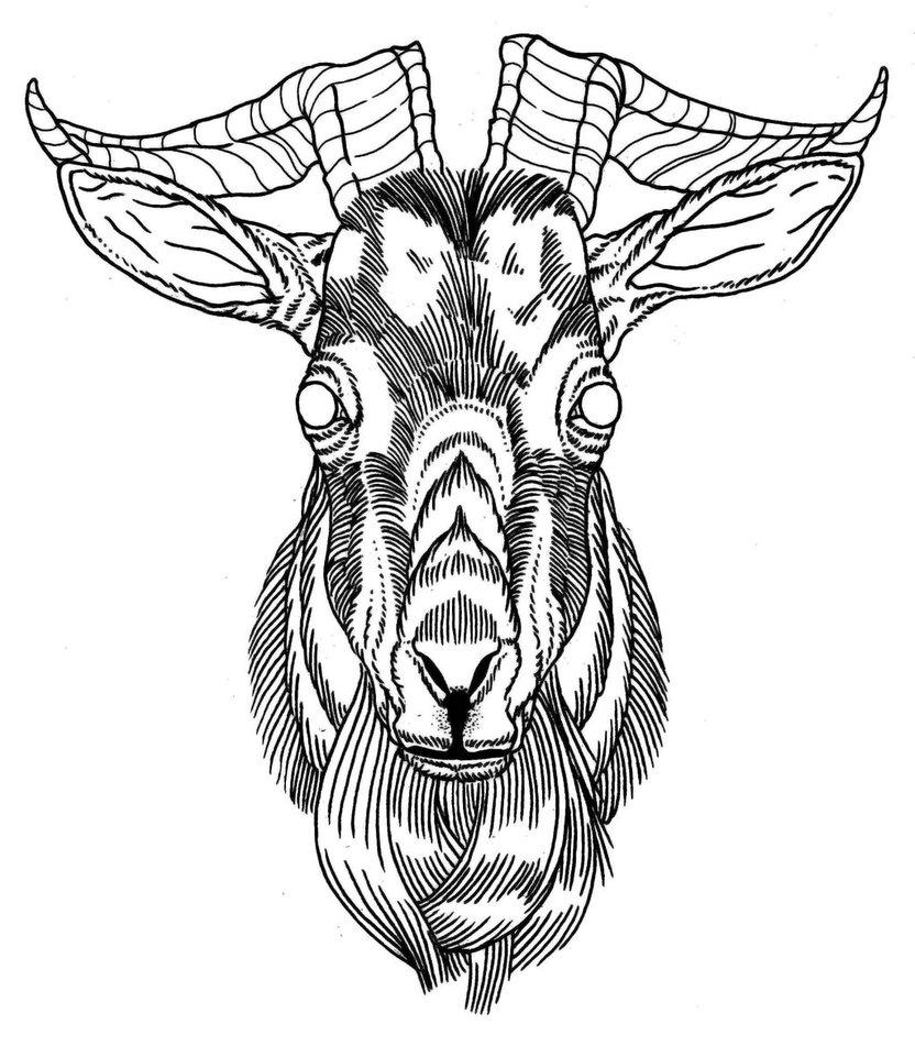 832x961 Satanic Goat Head Drawing