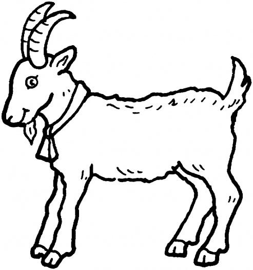 493x525 Goat Clipart Outline