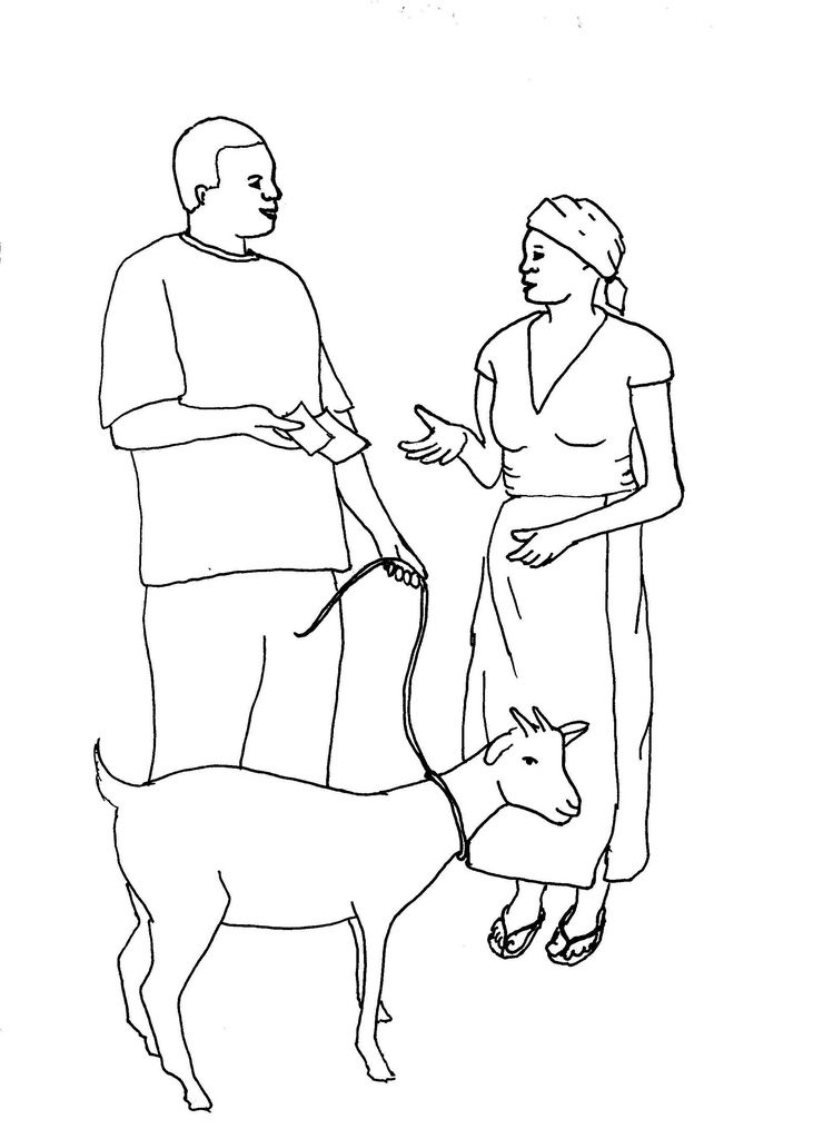 731x1024 Line Drawing Of A Goat Sale Used As Illustration Card