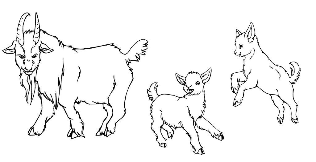 1024x526 Nigerian Dwarf Goats Lineart By Xiphosuras