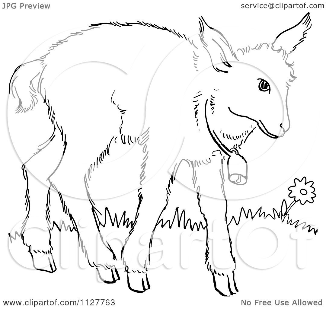 1080x1024 Cartoon Of A Retro Vintage Black And White Baby Goat With A Bell