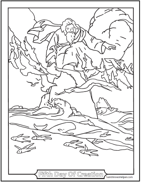 590x762 Creation Coloring Pages God Made Fishes And Birds