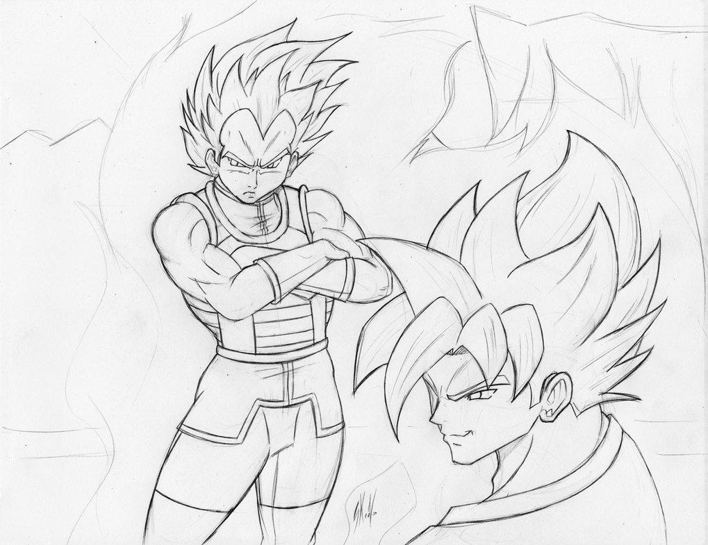 1019x785 Ssgss Goku And Vegeta