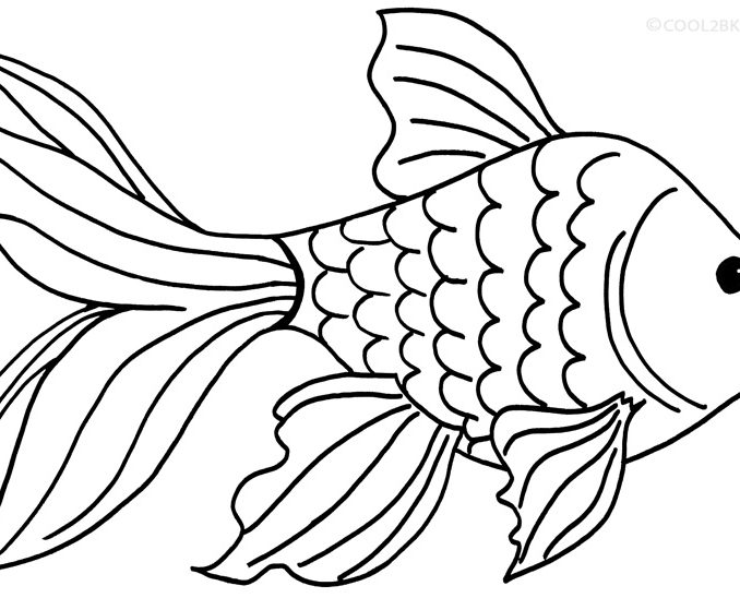 678x548 Great Goldfish Coloring Pages 55 On Line Drawings With Goldfish