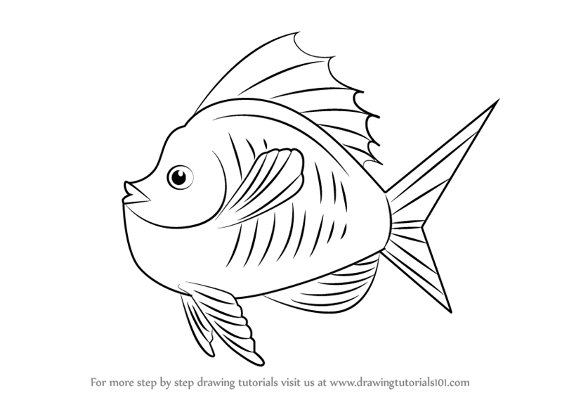 800x566 Learn How To Draw Goldfish In Tank (Animals For Kids) Step By Step