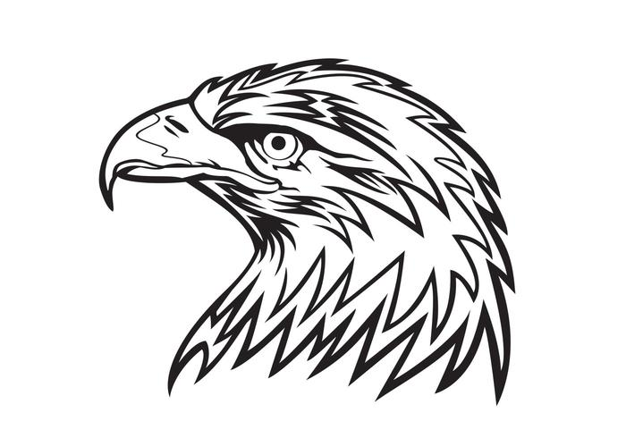 700x490 Eagle Head Vector