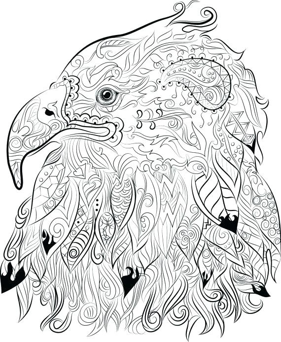 570x694 Eagle Picture To Color Great Flying Bald Eagle Coloring Page