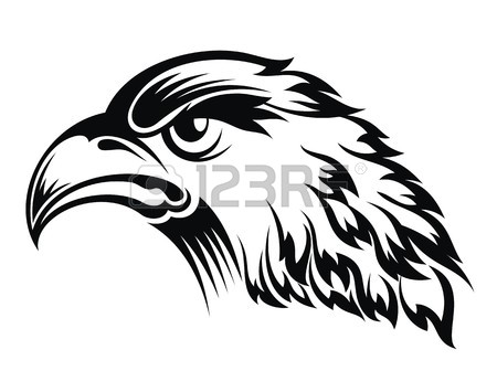450x336 7,901 Eagle Drawing Cliparts, Stock Vector And Royalty Free Eagle