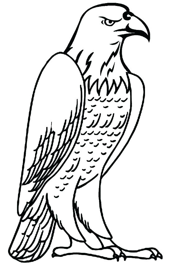 554x850 Idea Coloring Page Of An Eagle Or Eagles Coloring Pages Coloring