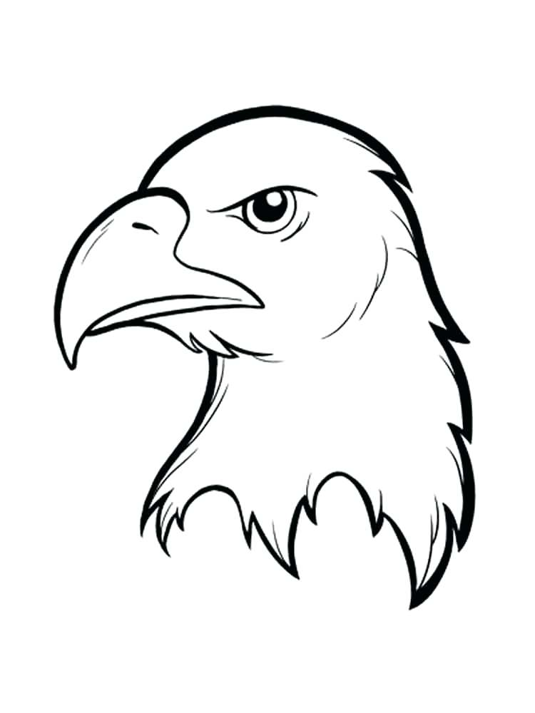 750x1000 Coloring Page Of An Eagle Eagle Birds Coloring Pages 1 Coloring