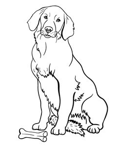 236x305 Printable Golden Retriever Coloring Page. Free Pdf Download