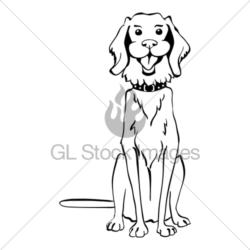 500x500 Vector Sketch Funny Golden Retriever Dog Sitting Gl Stock Images