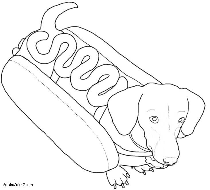 732x663 Coloring Pages Puppy Line Drawings Colouring For Fancy Coloring