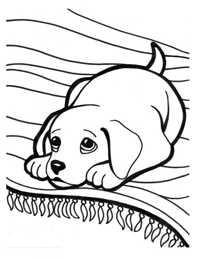 785x1024 Golden Retriever Puppy Coloring Pages