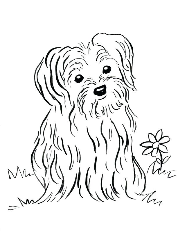 613x794 Puppy Coloring Pages 51 Packed With Puppy Coloring Pages Free