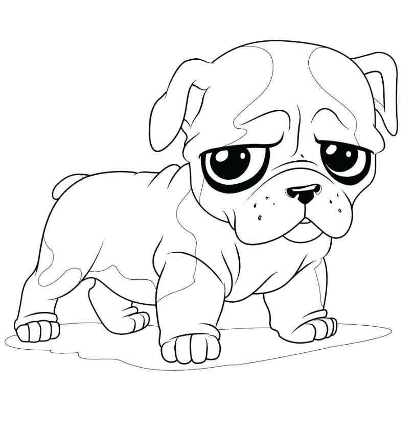 810x854 Coloring Pages Draw A Puppy Coloring Pages Golden Retriever Puppy