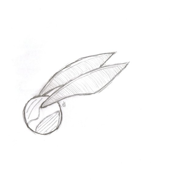 600x590 Golden Snitch By Greenscar