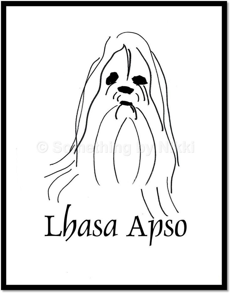 736x938 5 Dog Line Drawings, Printable, Instant Download, Lhasa Apso