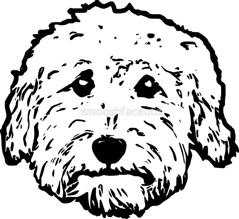 800x732 Goldendoodles! Adorable Doodle Dogs In Black And White Stickers