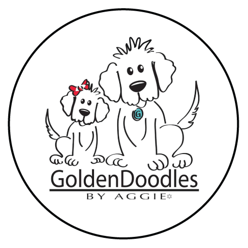 512x512 Goldendoodles By Aggie